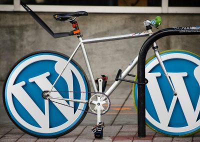 Les spécificités SEO sur WordPress
